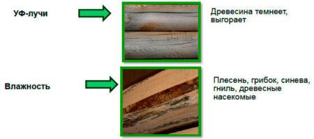 Негативное действие на деревянные стены